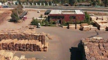 Produciendo Palets para la Industria del Vino en Chile